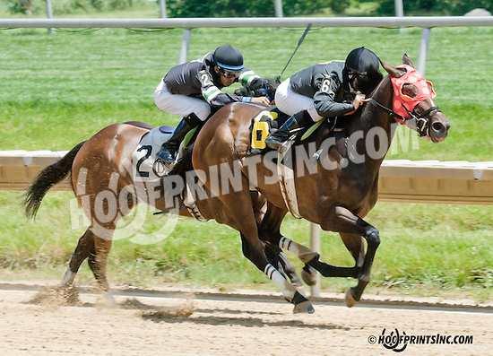 Becks Expectations winning at Delaware Park on 6/29/13