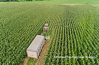 63801-10618 Farmer cutting corn for silage-aerial Marion Co. IL