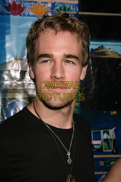"JAMES VAN DER BEEK.""The Darjeeling Limited"" Los Angeles Premiere held at the Academy of Motion Picture Arts & Sciences, Beverly Hills, California, USA..October 4th, 2007.headshot portrait stubble facial hair .CAP/ADM/RE.©Russ Elliot/AdMedia/Capital Pictures."