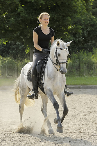 17 06 2012. Germany. Young Horsewoman on Lusitano Stallion at Dressage Equestrian sports event.  Model Released