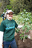 Tree Planting Event - Mountain View Trees (Urban Landscaping)