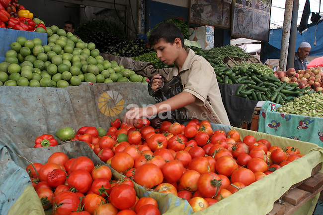 A Palestinian boy buy vegetables in the popular AlZawya market in Gaza City on Sept. 22, 2010 . as Gaza Strip which suffers from high prices on vegetables . Photo by Mohammed Asad