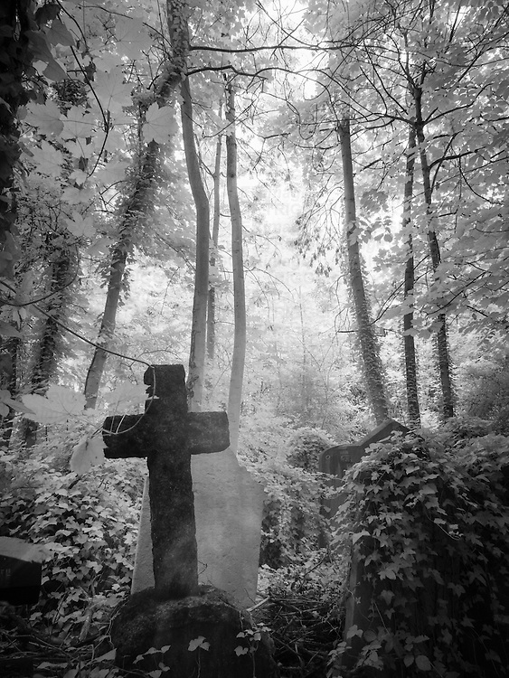 Abney Park Cemetery, London, UK