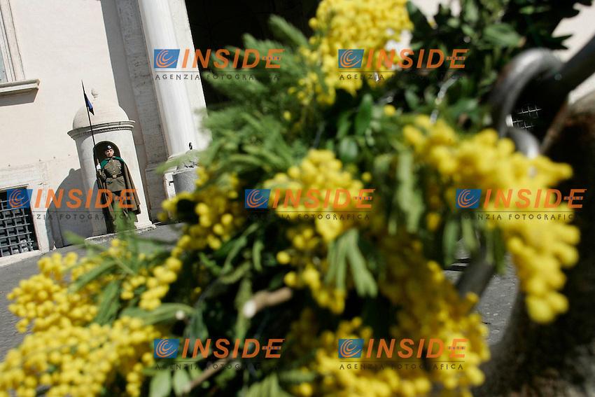 IN OCCASIONE DELLA FESTA DELLA DONNA IL QUIRINALE VIENE ADDOBBATO CON DELLA MIMOSA. CAMBIO DELLA GUARDIA AL FEMMINILE.Roma 08/03/2011 Quirinale Celebrazione della Giornata Internazionale della donna..Celebration of the day of the woman at Quirinale.Photo Samantha Zucchi Insidefoto