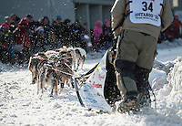 Ray Reddington Jr. of Wasilla steers his team around the corner of Fourth Avenue and Cordova Street at the ceremonial start of the 43rd Iditarod dog sled race in downtown Anchorage. 79 mushers made their way 11 miles through the slushy streets of Anchorage in unseasonably warm weather and early rain. This year's official re-start will begin in Fairbanks because of poor trail conditions in Southcentral Alaska.