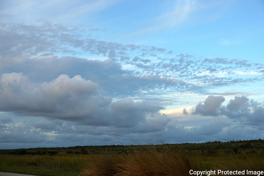 Clouds announce the arrival of evening as daylight departs in the Florida Everglades. Photographed at Arthur Marshall Loxahatchee<br /> Wildlife Refuge, Boynton Beach, Florida.