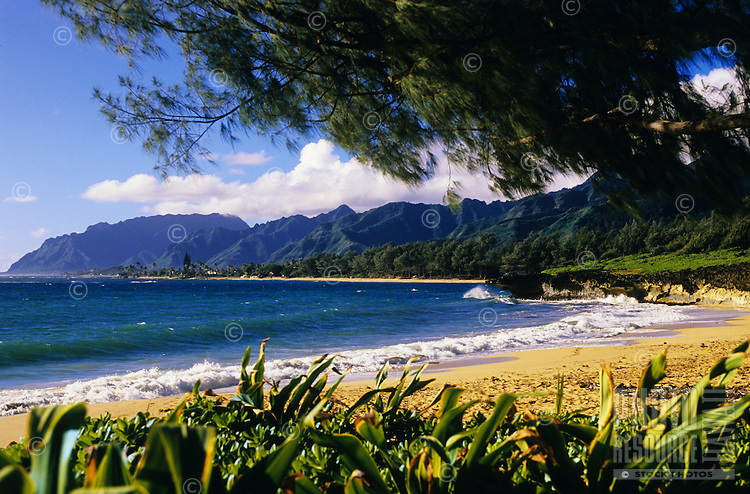 Morning at Pounder's Beach between Laie and Hauula on Oahu's windward coast.