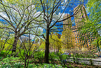 USA-New York City-Central Park