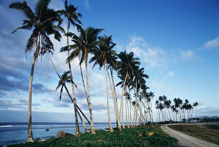 Salmumu beach, Western Samoa.  Material World Project.