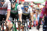 World Champion Alejandro Valverde (ESP) Movistar Team crosses the finish line at the end of Stage 2 of La Vuelta 2019 running 199.6km from Benidorm to Calpe, Spain. 25th August 2019.<br /> Picture: Luis Angel Gomez/Photogomezsport | Cyclefile<br /> <br /> All photos usage must carry mandatory copyright credit (© Cyclefile | Luis Angel Gomez/Photogomezsport)