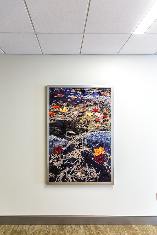 Commercial Decor | Healthcare Facility; James Gallery/Frame Foundry
