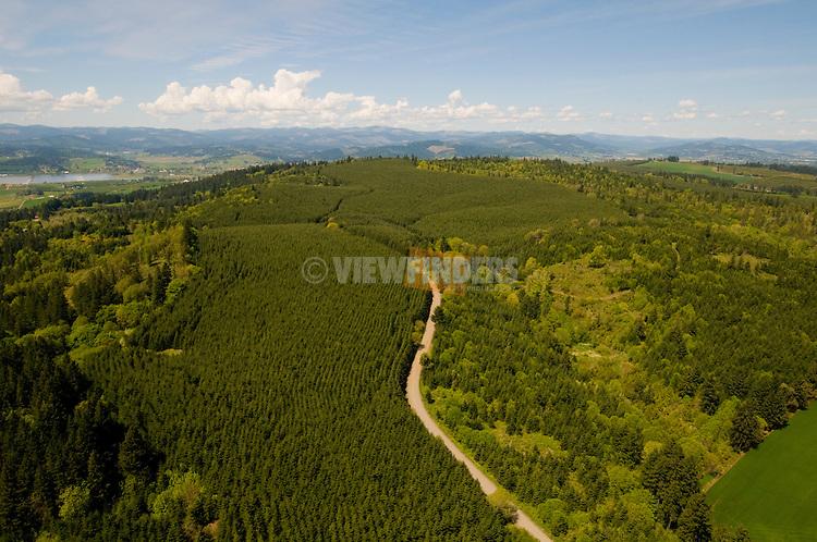 Aerial View of Chehalem Ridge, Washington