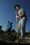 Volunteer Kristen McPherson works at the Kashmere Community Garden on Cavalcade Saturday Feb. 27,2016.(Dave Rossman Photo)