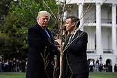 U.S. President Donald Trump and France's president Emmanuel Macron greet each other after planting a tree, a gift from the President and Mrs. Macron, on the South Lawn of the White House in Washington, D.C., U.S., on Monday, April 23, 2018. As Macron arrives for the first state visit of Trump's presidency, the U.S. leader is threatening to upend the global trading system with tariffs on China, maybe Europe too. <br /> Credit: Yuri Gripas / Pool via CNP
