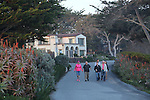 Walking in Carmel