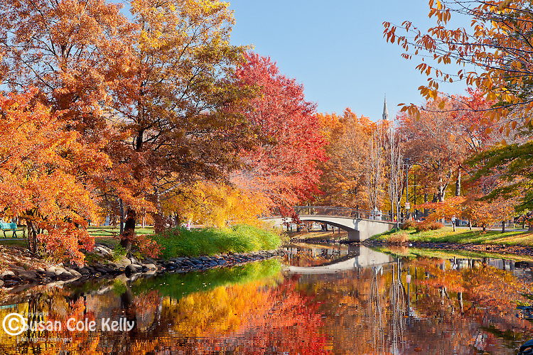 Foliage Tours From Boston