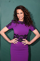 LOS ANGELES - JUL 8:  Andie MacDowell at the Crown Media Networks July 2014 TCA Party at the Private Estate on July 8, 2014 in Beverly Hills, CA