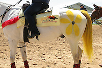 Out rider pony is in Preakness yellow