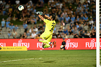 31st January 2020; Netstrata Jubilee Stadium, Sydney, New South Wales, Australia; A League Football, Sydney FC versus Brisbane Roar; Jamie Young of Brisbane Roar makes a diving save to keep the score to 1 goal