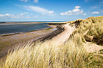 Sandy beach at low tide, Budle Bay, Northumberland, England, UK