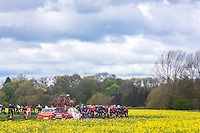 Picture by Alex Whitehead/SWpix.com - 29/04/2016 - Cycling - 2016 Tour de Yorkshire, Stage 1: Beverley to Settle - Yorkshire, England - The peloton in action.