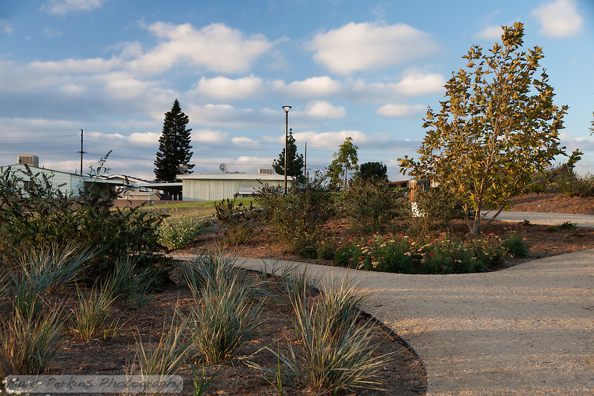 A view of the decompose granite pathway making its way through the butterfly garden just before sunset at Stanton Central Park with a partly cloudy sky in the background.