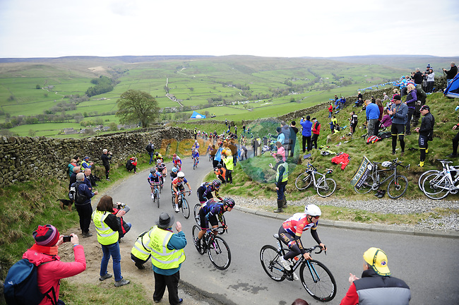 The peloton tackle one of the numerous climbs during the ASDA Women's Tour de Yorkshire 2017 running 122.5km from Tadcaster to Harrogate, England. 29th April 2017. <br /> Picture: ASO/P.Ballet | Cyclefile<br /> <br /> <br /> All photos usage must carry mandatory copyright credit (&copy; Cyclefile | ASO/P.Ballet)