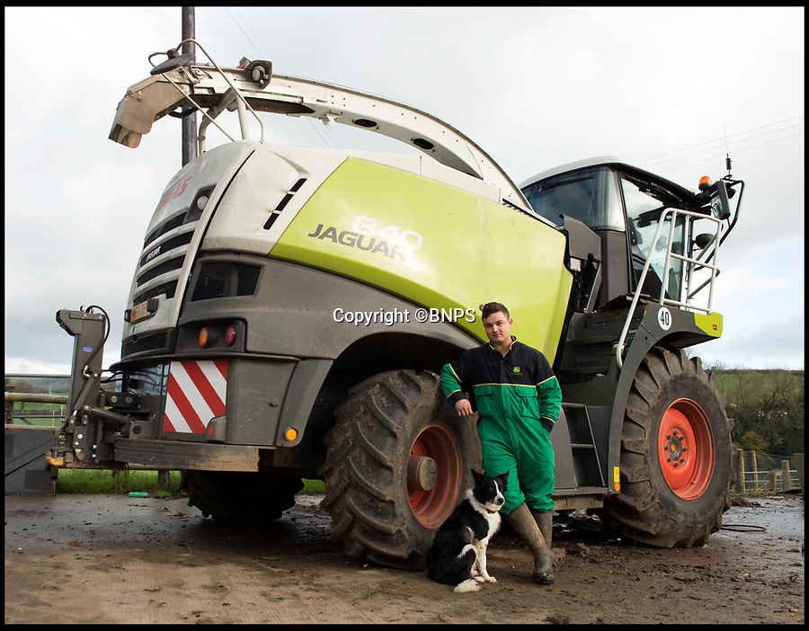 BNPS.co.uk (01202 558833)Pic: LeeMcLean/BNPS<br /> <br /> On the mend...Winnie with her owner Josh Sibley(22)<br /> <br /> Squashed Border collie Winnie has miracle escape from 15 ton tractor - Soggy ground saves  sheepish pooch.<br /> <br /> A pregnant sheepdog had a miracle escape after she was run over by a 15-tonne tractor - and survived because she was pushed into the soft mud.<br /> <br /> Shepherd Josh Sibley feared the worst when Winnie, a Border Collie, chased a rabbit under the 2ft wide tyre of a forage harvester.<br /> <br /> Luckily, because the ground was so soft Winnie was pinned down into the mud rather than being crushed to death.