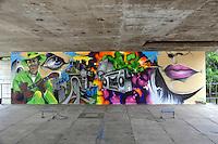 SAO PAULO, SP, 22 DE JANEIRO DE 2013 - Tela do norte americano Daze na  Bienal Internacional Graffiti Fine Art,  que lança sua segunda edição no MuBE com diversos artistas brasileiros e internacionais. As atividades de graffiti estão por todo o museu e fica até dia 22 de fevereiro, com entrada franca.  (FOTO: THAIS RIBEIRO / BRAZIL PHOTO PRESS).
