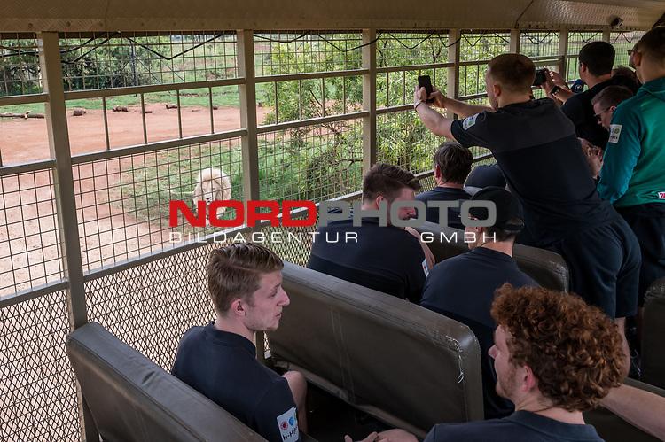 07.01.2019, Lion & Safari Park, Broederstroom, Kalkheuvel, RSA, TL Werder Bremen Johannesburg Tag 05<br /> <br /> im Bild / picture shows <br /> Löwe ist ein begehrtes Fotomotiv, Johannes Eggestein (Werder Bremen #24) mit Handy im Ausflugsbus, <br /> <br /> Teil der Spieler besucht am 5. Tag des Trainingslager eine geführte Tour im Lion & Safari Park, <br /> <br /> Foto © nordphoto / Ewert