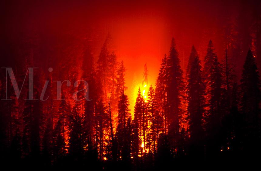 Prescribed fire burns at night