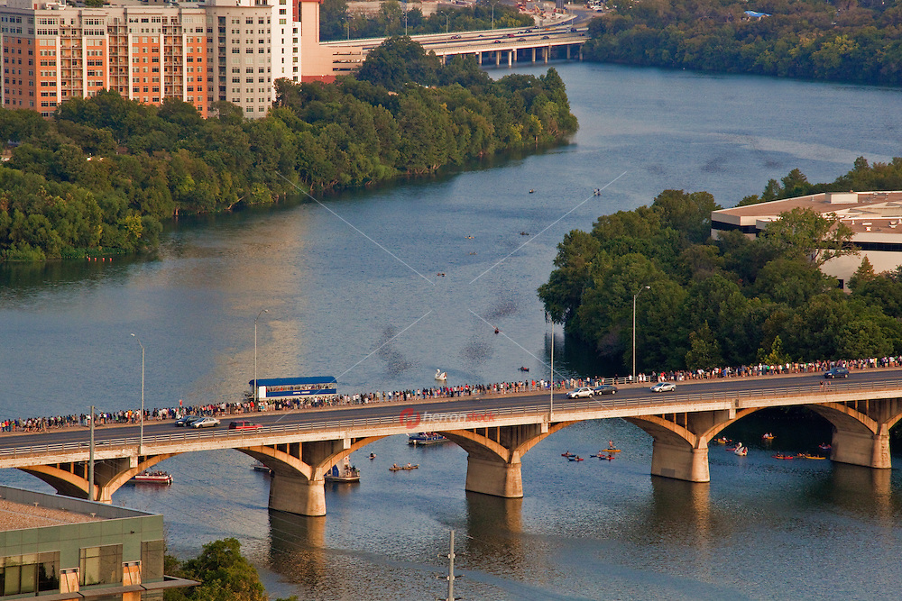 Very unique aerial view from a helicopter of the Congress Avenue Bridge Bats flying east along Lady Bird Town Lake in Austin, Texas