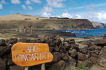 Ahu Tongariki, on the south coast of Easter was the site of one of the largest of the ahu.