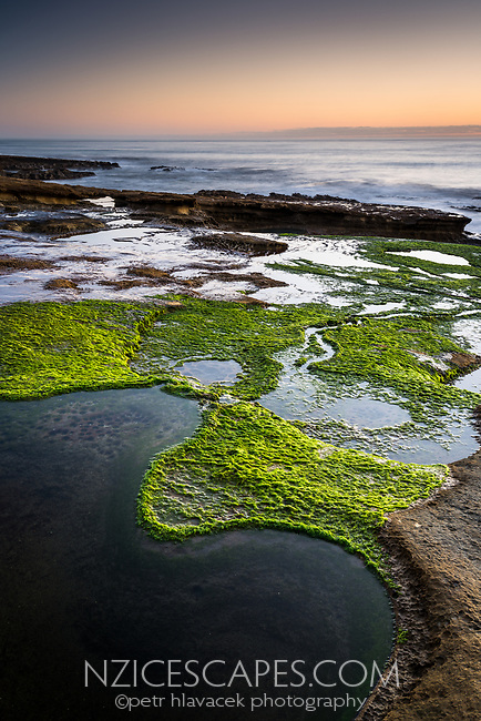 Limestone rocks with water pools on Truman Track under sunset in Punakaiki, Paparoa National Park, West Coast, New Zealand