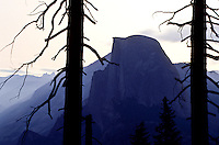 Half Dome and a Dead tree at Glaciar Point in Yosemite National Park, California, USA