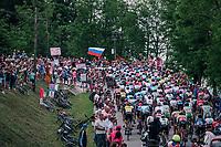 peloton with 30km to go<br /> <br /> stage 13 Ferrara - Nervesa della Battaglia (180km)<br /> 101th Giro d'Italia 2018