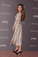 LOS ANGELES, CA - NOVEMBER 04: Elizabeth Chambers at the 2017 LACMA Art + Film Gala Honoring Mark Bradford And George Lucas at LACMA on November 4, 2017 in Los Angeles, California. Credit: David Edwards/MediaPunch /NortePhoto.com