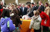 United States President George W. Bush (C) pardons a turkey named Pumpkin during the annual White House Turkey Presidential Pardon presentation in the Rose Garden at the White House November 26, 2008 in Washington, DC. Later today Pumpkin will be flown to Disneyland and be an honorary grand marshal of Disney's Thanksgiving Day Parade in California.  The annual White House tradition that has held strong since President Harry S. Truman first pardoned a bird in 1947.  <br /> Credit: Mark Wilson / Pool via CNP