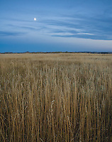 The moon rises over the grasslands that fill the eye at Theodore Roosevelt National Park (south unit), in western North Dakota