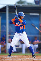 New York Mets Raul Beracierta (23) during an Instructional League game against the Miami Marlins on September 29, 2016 at the Port St. Lucie Training Complex in Port St. Lucie, Florida.  (Mike Janes/Four Seam Images)