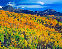 Aspen in the La Sal Mountains, Manti La Sal National Forest, Utah  Near Warner Lake  View toward Gold Basin  October