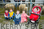 Enjoying  the Kingdom County Fair in Ballybeggan on Sunday were l-r Joe Barry, Matthew Quilter, Caoimhe Barry, Kate Barry and Emma Barry from Listowel.