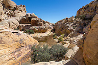 Red Rock Canyon, Nevada.  Calico Tanks at end of Trail.
