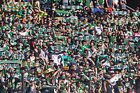 Portland, Oregon - Sunday October 6, 2019: Portland Timbers vs San Jose Earthquakes at Providence Park in Portland, Oregon.