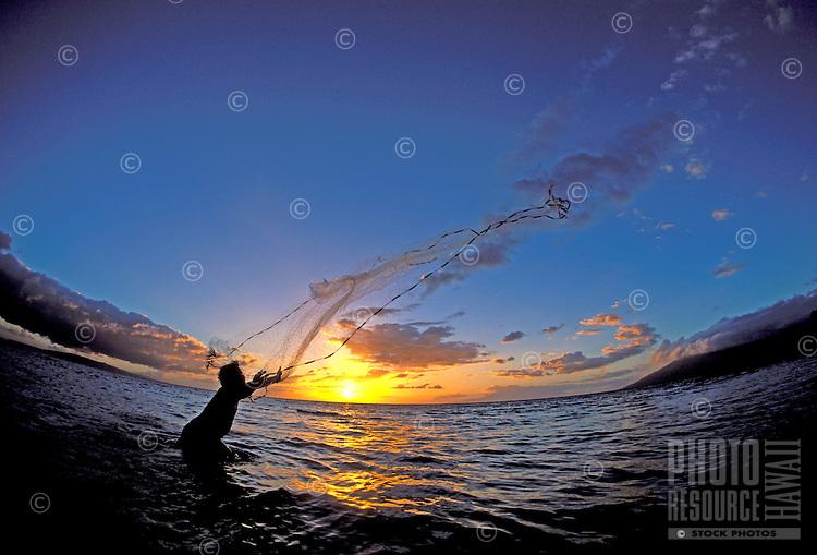 Hawaiian man throws a net at sunset in Kihei, Maui.