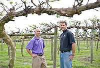 Dave and Jonathan Fussell of Duplin Winery amongst their Vineyards, early in the growing season.