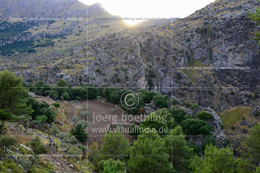 SPAIN Mallorca, Soller, farming in the mountains, olive trees / SPANIEN Mallorca, Soller, Landwirtschaft in den Bergen, Oliven