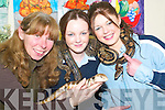 COSY: Frightening but exciting - Listowel Community College welcomed Rosie Campbell (holding Sheba the Blue Tongued Skink) of the Animal Magic Road Show to the school, as part of the Junior Cert School Programme on Tuesday. Pictured getting too close for comfort with Fiachra the Boa Constrictor and Sultan the Royal Python were Johanna Ryan and Rachel Wilmott, both Listowel.   Copyright Kerry's Eye 2008