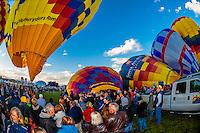 Hot air balloons inflating before lifting off at the Albuquerque International Balloon Fiesta, Albuquerque, New Mexico USA.