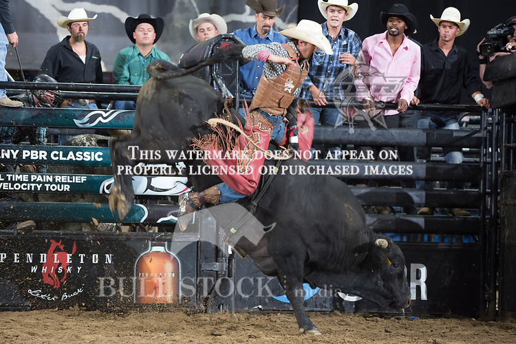 Devin Hager attempts to ride Can't Be Touched ( Mike Miller/Torres Bros )  during the first round of the PBR Real Time Pain Relief Velocity Tour event in Albany, NY - Photo by Andre Silva